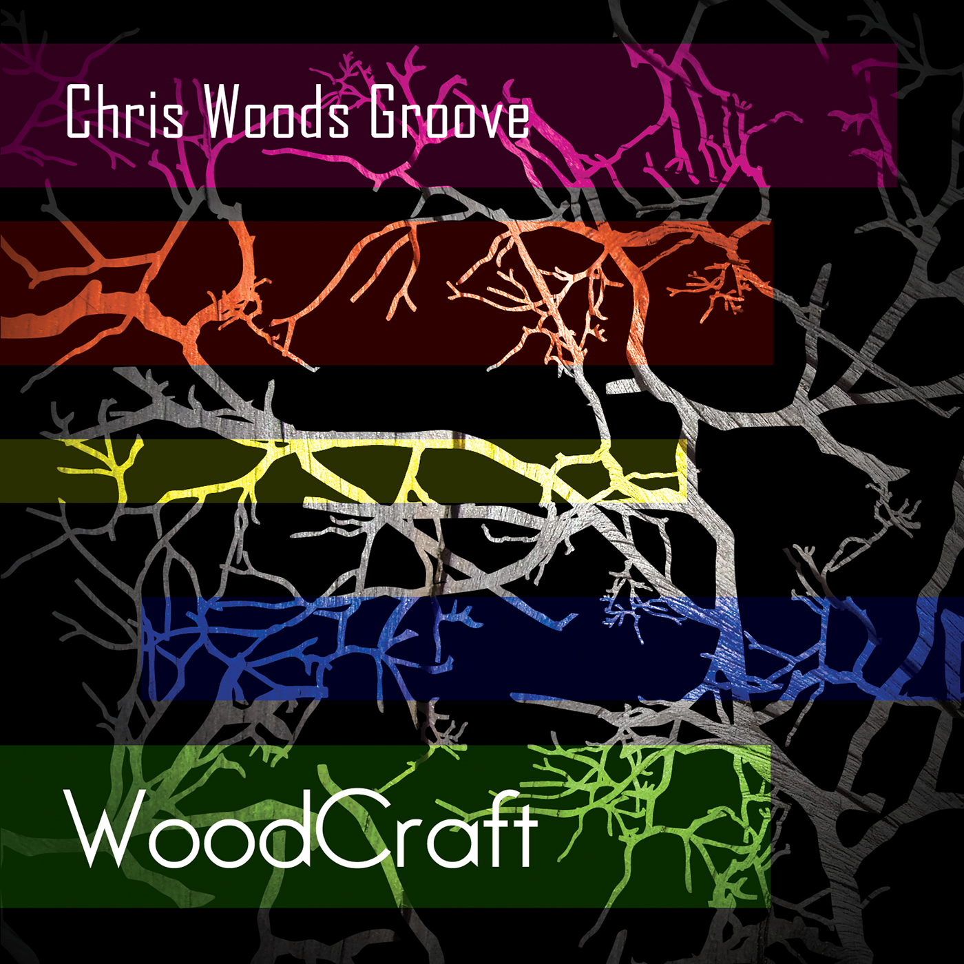 The Chris Woods Groove Orchestra -